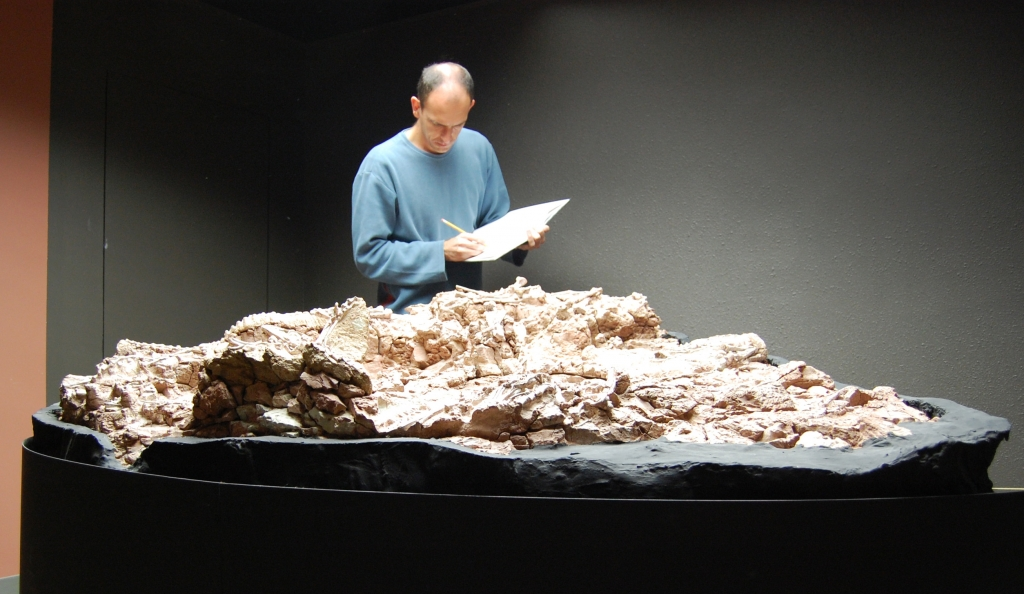 Max studying one of the famous Ghost Ranch blocks containing Coelophysis.  Albuquerque (2009)