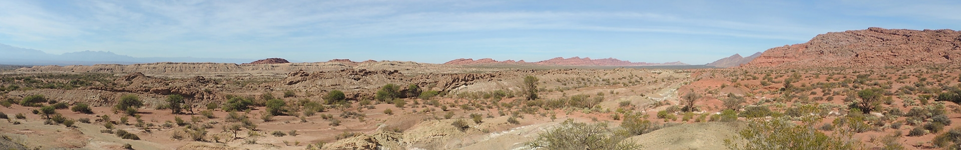 Ischigualasto Formation